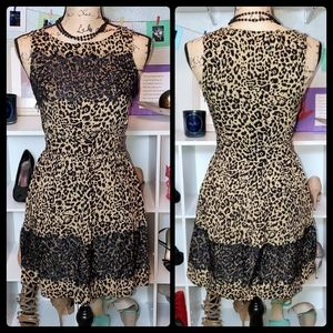 Ultra Pink Lace Leopard Print Fit N Flare Dress